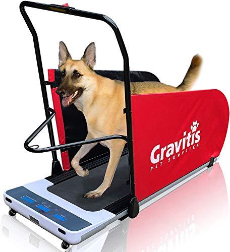 Gravitis Pet Supplies Tapis de course électrique double usage pour chiens et humains Machine de course motorisée pour dressage de chien