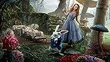 La niña y el conejo en el bosque de setas.-Pintar por Numeros Adultos Niños DIY Pintura por Números con Pinceles y Pinturas Decoraciones Pinturas para el Hogar - 40X50CM