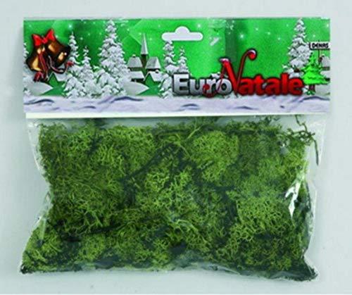 Euronatale 3 Confezioni da 40 Grammi per Un Totale di 120 Grammi Muschio Busta Muschio LICHENE Verde per PRESEPE MODELLISMO Decorazione Natalizia CM cod. CC20 ENA2504