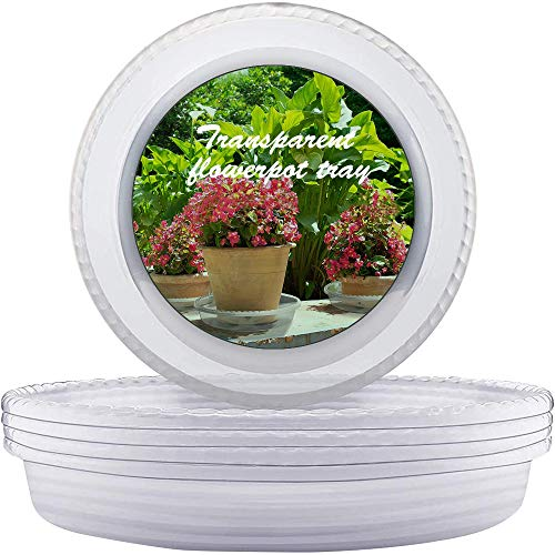 LIKOSO 10 Pack Transparent Clear Plant Saucers Plastic Flower Pot Drip Trays for Indoor and Outdoor Plants (25 CM)