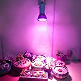 Weiyiroty Humanistic & High-performing Grow Lamp, Lighting Without Dead Ends Plant Grow Light, for Small Grow...