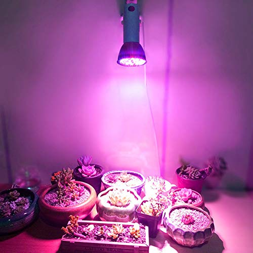 Grow Lamp, Plant Grow Light, Full Spectrum E27 Indoor Plants Veg Flower for Small Grow Box for Greenhouse Hydroponic Grow Tent DIY Hydroponics, Bonsai