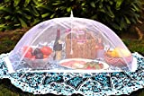 (Set of 2) Zakara 100% Organza Mesh Net Extra Large (49' x 27') Food Cover Tents for Picnics and BBQs to Keep Insects, Bugs, and Flies Away   Comes with Nylon Case for Easy Storage & Travel