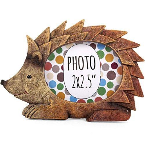 Best hedgehog frame for 2020