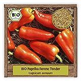 BIO Paprika Samen süße rote Spitzpaprika Gemüse Snackpaprika Ferenc Tender