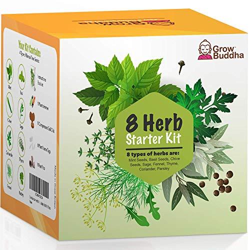 Eigenes Saatgutset züchten - Einfach eigene Pflanzen züchten mit unseren einsteigerfreundlichen Anzuchtsets - Samen-Set - Geschenkset, einzigartige Geschenkidee (8 Kräuterset)