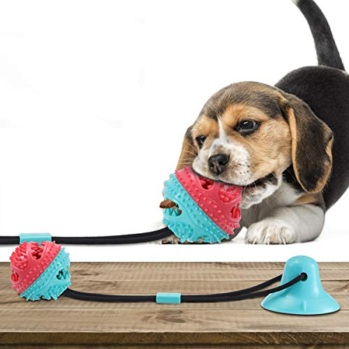 Charminer Hundespielzeug mit Saugnapf, Multifunktions Pet Spielzeug, Hunde Molar mit Saugnapf Kauseil Ball Spielzeug Hund Zahnbürste Spielzeug Chew Spielzeug für Hund Ziehen, Kauen, Spielen