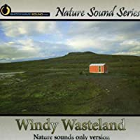 Windy Wasteland (Nature Sounds Only Version)
