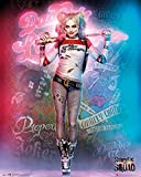 DC Comics Suicide Squad, Harley Quinn Stand, Mini-Poster,