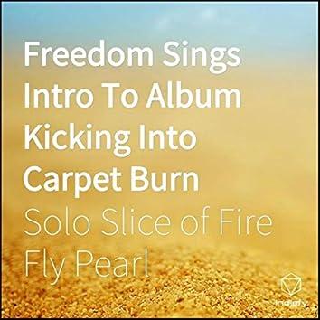 Freedom Sings Intro To Album Kicking Into Carpet Burn
