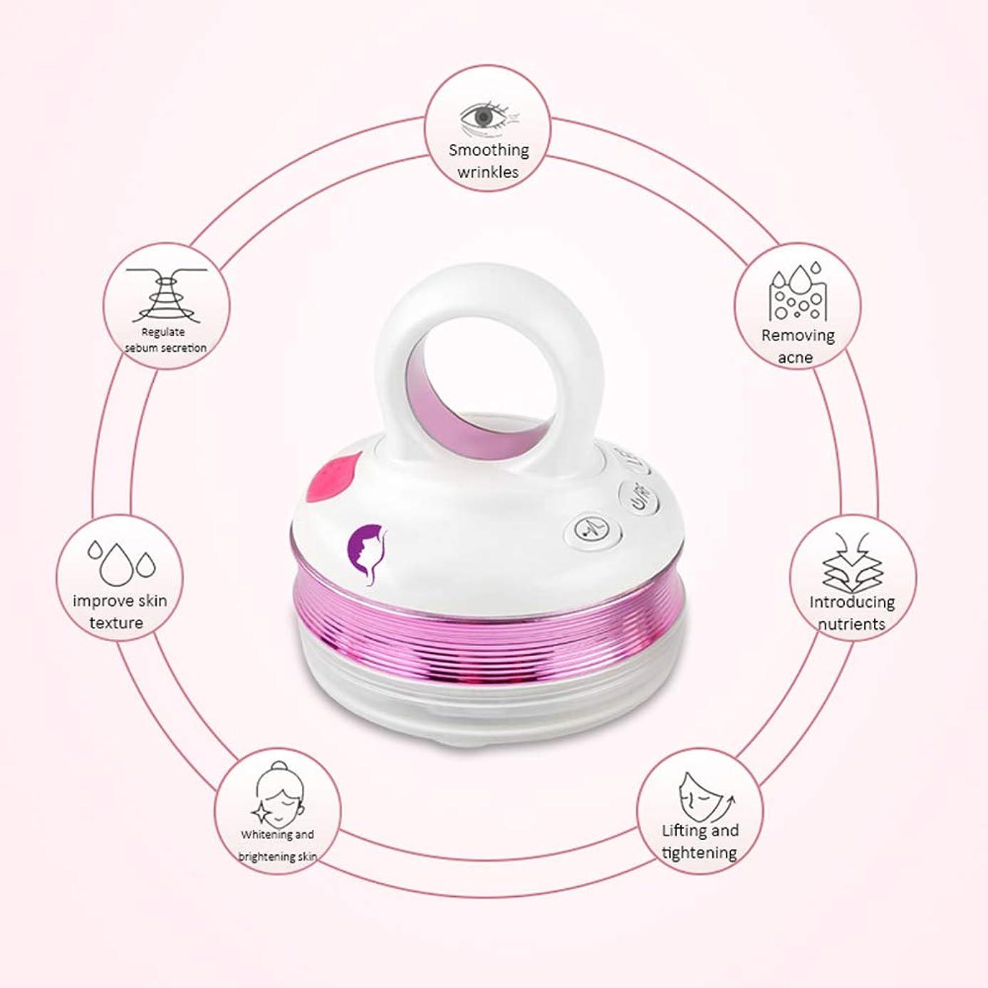 ライター申込み透けるRFラジオ周波数フェイシャルマシン、EMSマッサージャー、ハンドヘルドフェイシャルイオン導入美容機器、家庭用美容機器振動機器,Purple