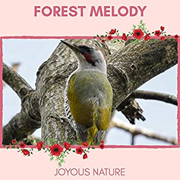 Forest Melody - Joyous Nature