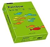 Papyrus 88042678 Drucker-/Kopierpapier farbig: Rainbow 120 g/m², A4 250 Blatt Buntpapier, matt intensivgrün