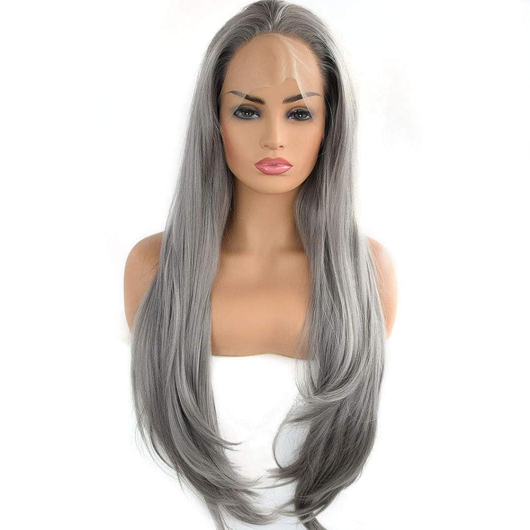 包囲メイエラ宴会Yrattary 多層シルバーグレーの女性の長い巻き毛のフロントレースのかつら耐熱繊維複合ヘアレースのかつらロールプレイングかつら (色 : Silver grey)