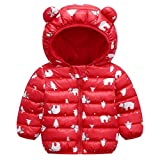 Baby Boys Girls Winter Coats Warm Soft Puffer Down Jacket Cotton Padded Hooded Coat for Newborn Infant Toddler Kids Outwear (01-Red Bear, 2T)