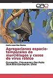 Agregaciones espacio-temporales de murciélagos y casos de virus rábico: Concepción, Chiguayante y San Pedro 2014-2016 (Concepción, Chile)