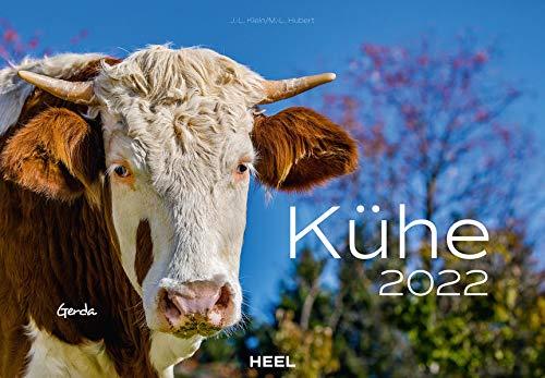 Kühe 2022: Der sympathische Kuh-Kalender mit den charmanten Namen