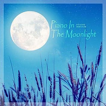 달빛 속의 피아노