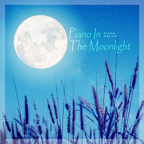 Piano Dream