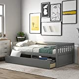 Merax Solid Wood Twin Size Platform Bed Frame for Kids/No Box Spring Needed Daybed, Gray(Drawers)