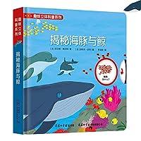 趣味立体科普系列:揭秘海豚与鲸