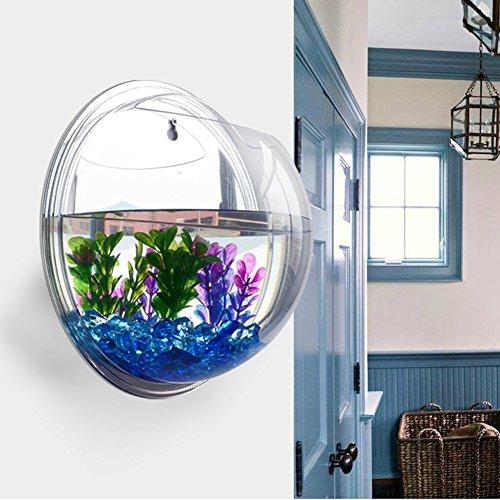 Idylische Blase Schüssel Pflanze Aquarium aus Acryl mit Wandhalterung Blumentopf GartenTerrasse Balkon Wand-Dekor Durchmesser : 15 cm (Spiegel)
