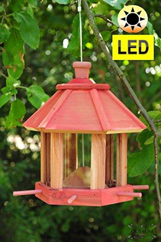 Futterhaus ZedernHolz - MIT Beleuchtung,LED-Licht / Vogelhaus,wetterfest (GRÜN) PURE GREEN,BEL-gras robust,stabil,PREMIUM Vogelhaus mit XXL- Silo + Anflughilfe,futterhaus für Vögel,WINTERFEST-mit Vogelfutter-Station Farbe grasgrün grün kräftig tannengrün/natur,Ausführung Naturholz MIT WETTERSCHUTZ-DACH für trockenes Futter, Vollholz