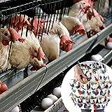 Knowled Schürze zum Eiersammeln, mit 12 Eiertaschen, ideal für Bauern/Hühnerbesitzer, Küchenei Schürze, Hahn und Henne drucken Floral 50×35cm Remarkable