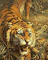 WEIFENGX油絵 数字キットによる絵画 塗り絵 大人 手塗り DIY絵 デジタル油絵 フレームレス 40x50cm - 草の中の虎
