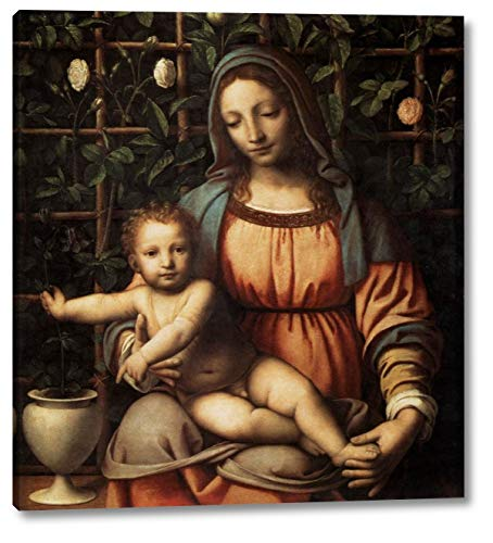 "Madonna in The Rose Garden by Bernardino Luini - 22"" x 24"" Gallery Wrap Canvas Art Print - Ready to Hang"