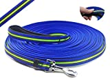 YOOGAO Pet Long Dog Training Leash Dog Lead with Special Non-Slip Design and Padded Handle, 10/15/33/50 ft, for Any Size of Dogs