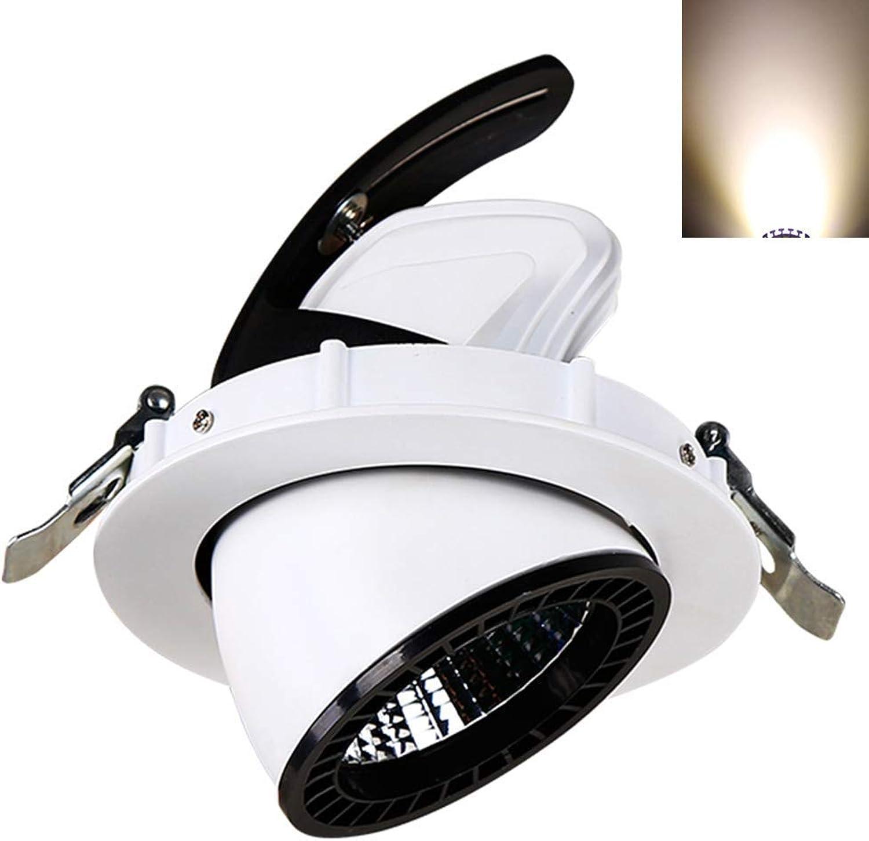 FuweiEncore Einbau COB Scheinwerfer LED Decke Downlight Starke Aluminium Eingebettete Lampe Wohnzimmer Gang TV Hintergrund Ware Zeigen Business Glühbirne (Farbe   30w, Gre   -)