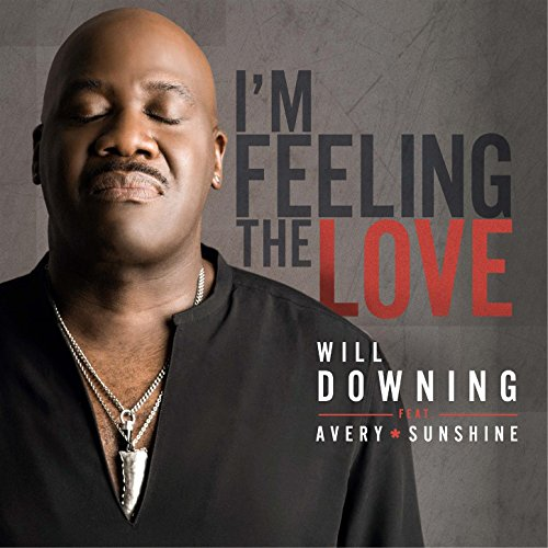 I'm Feeling The Love (feat. Avery*Sunshine)