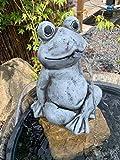 Wasserspeier Großer Frosch Frostfeste Steinfiguren