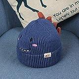 wtnhz Artículos de Moda Sombrero Hecho Punto bebé Lindo del Sombrero de Lana del bebé de la Forma del Dinosaurio de la historietaRegalo de Vacaciones