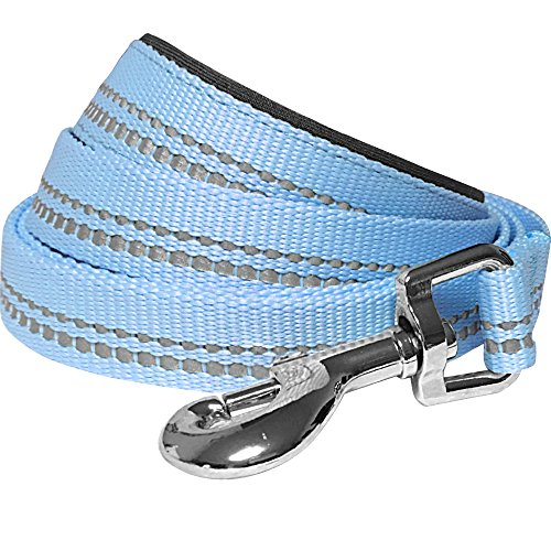 Blueberry Pet 2 Colors 3M Reflective Pastel Color Dog Leash with Soft & Comfortable Handle, 5 ft x 5/8, Baby Blue, Small, Leashes for Dogs