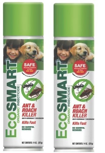 EcoSmart 682384615768 Ant & Roach Killer 14 oz. Aerosol (2 Pack), Brown/A
