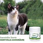 AniForte Taurine pour chats 100g - Acide aminé essentiel, régulation du système nerveux et du système immunitaire, soutien de la rétine et du métabolisme, complément alimentaire parfait #2
