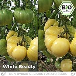 Pepperworld White Beauty Bio Fleisch-Tomate, 10 Korn, Tomaten-Saatgut zum Anpflanzen, süßlich und schmackhaft