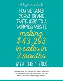 How we gained 20,283 organic traffic users to a WordPress website making $43,293 in sales in 2 months with this 1 trick.: Our clients website is is now ... traffic into new customers (English Edition)
