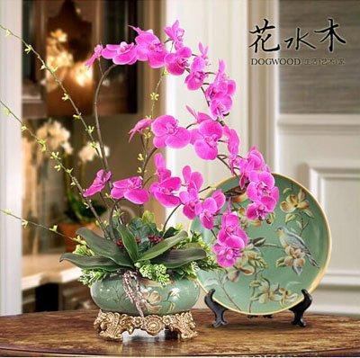Fleur exotique Orchidée Graines Cattleya Multicolor Papillon Orchidee Bonsai Monoflord Mini jardin plante facile à cultiver 200 pcs/sac 11