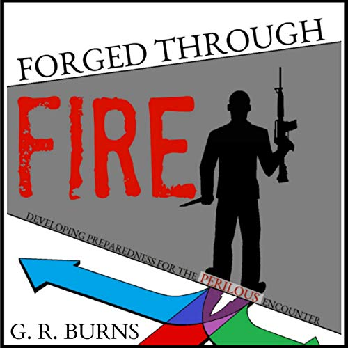 Forged Through Fire audiobook cover art