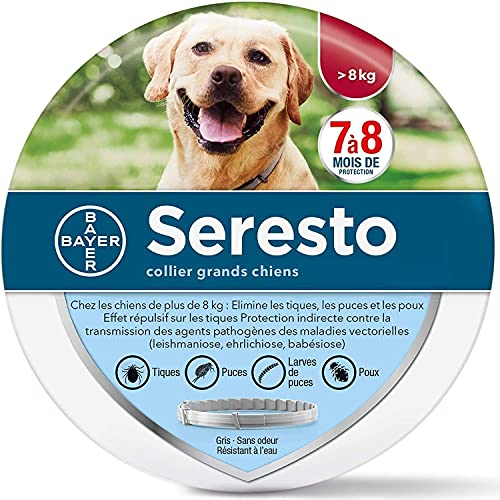 Collar Perro Grande Mediano Pequeño,Gatos Colla Protezione efficace per 8 MESI