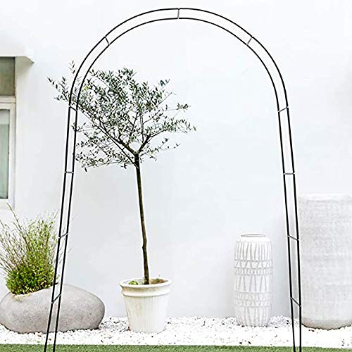 Arbors Gothic Style Garden Arch,Metal Pergola, Rose for Various Climbing Plant