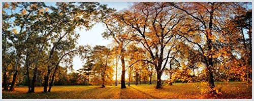 Eurographics Beautiful Autumn 50x125 Light Art, Acryl, bunt, 125 x 50 x 5 cm