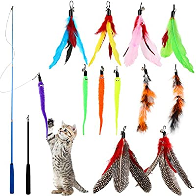 WD&CD 14 Pack Cat Feather Toys, Interactive Retractable Cat Teaser Wand with with Bells and Feather Cat Toys