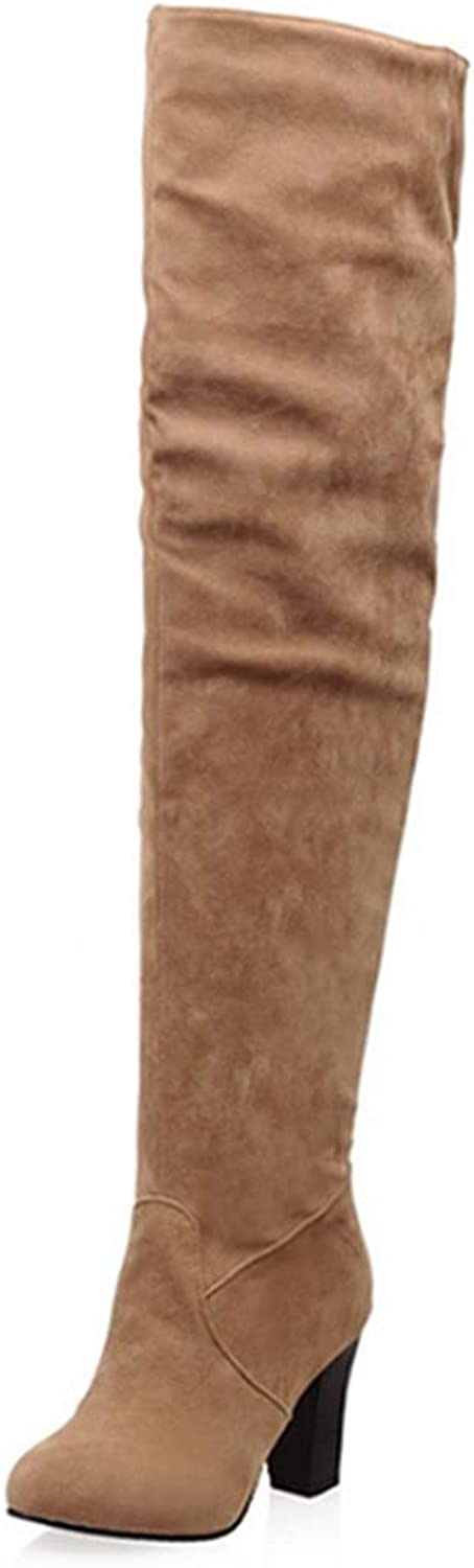DOSOMI Womens Winter Fashion Sexy Regular Wide Square Heel Toe Zipper Snow Over-The-Knee Boots