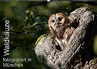 Waldkaeuze, fotografiert in Muenchen (Wandkalender 2022 DIN A2 quer): Bilder von Waldkaeuzen, aufgenommen in Park- und Gruenanlagen in und um Muenchen (Monatskalender, 14 Seiten )