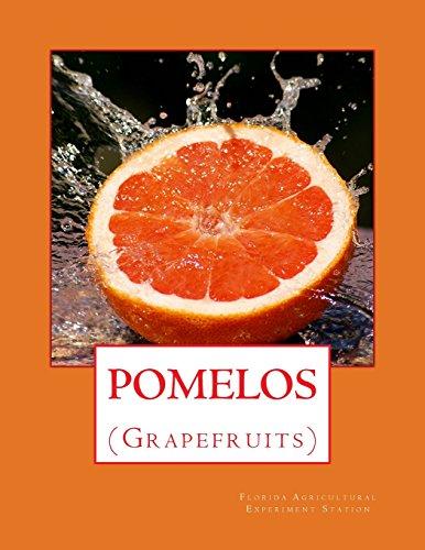 Pomelos: (Grapefruits)