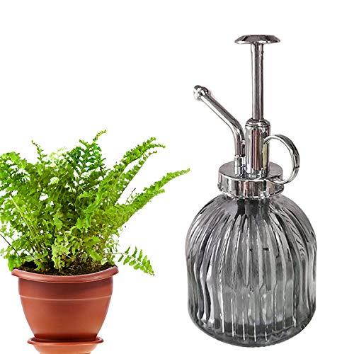 WELLXUNK Pflanze Mister,Pflanzen zerstäuber Glas, Blume Wasser Spray Flasche,Gießkanne mit Bronze-Kunststoff Top Pumpe,Pflanze Sprühflasche zum Gießen Kleiner Pflanzen